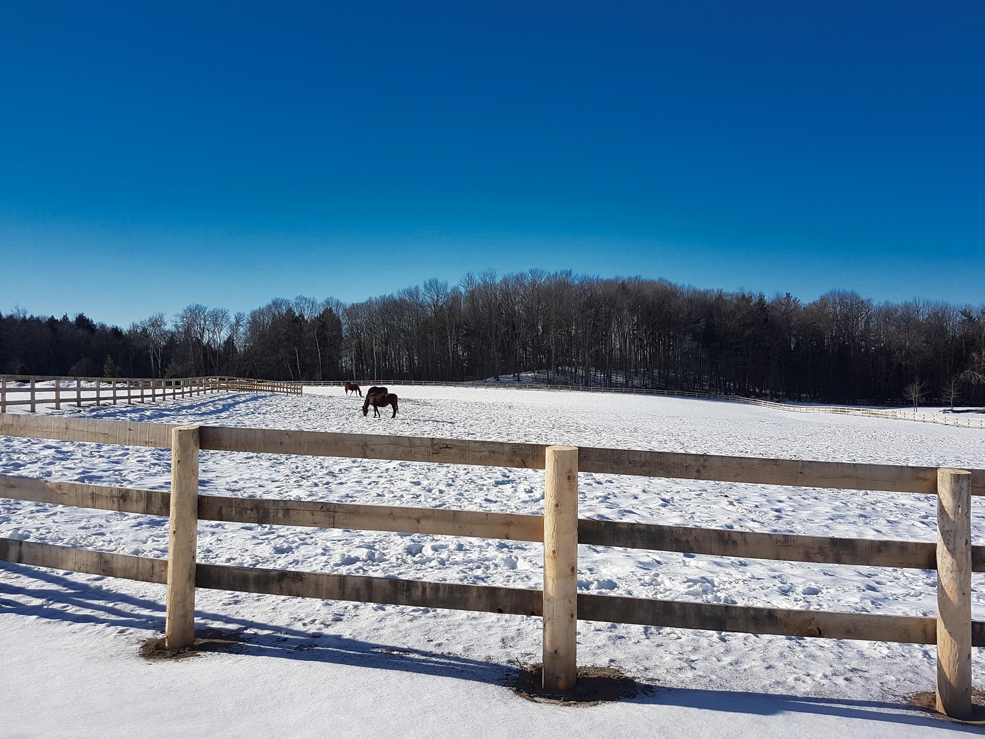 Farm Winter Checklist