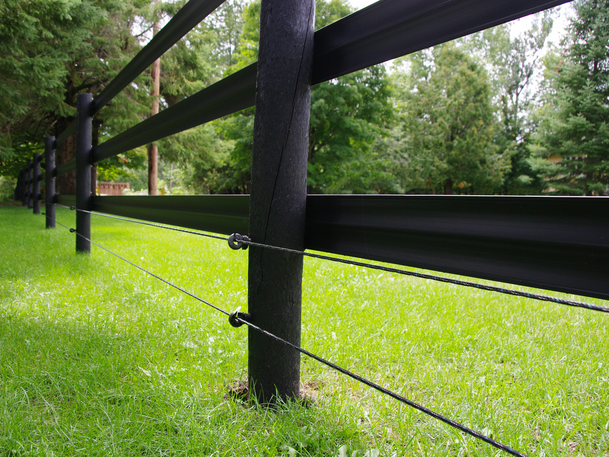 The Best Fencing Options for Your Outdoor Horse Farm