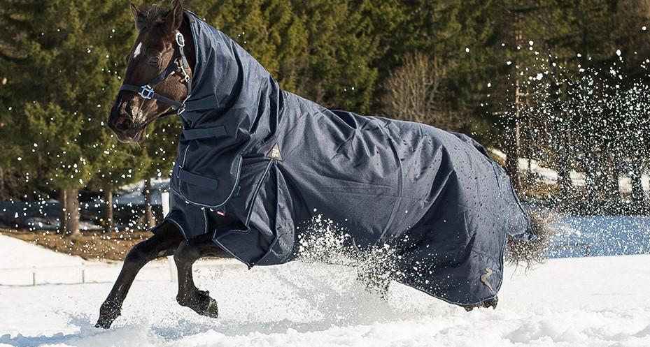 Choosing the Right Horse Blankets