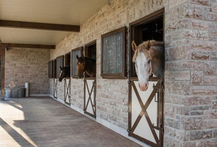 Favourite Indoor and Outdoor Accessories Every Barn Needs