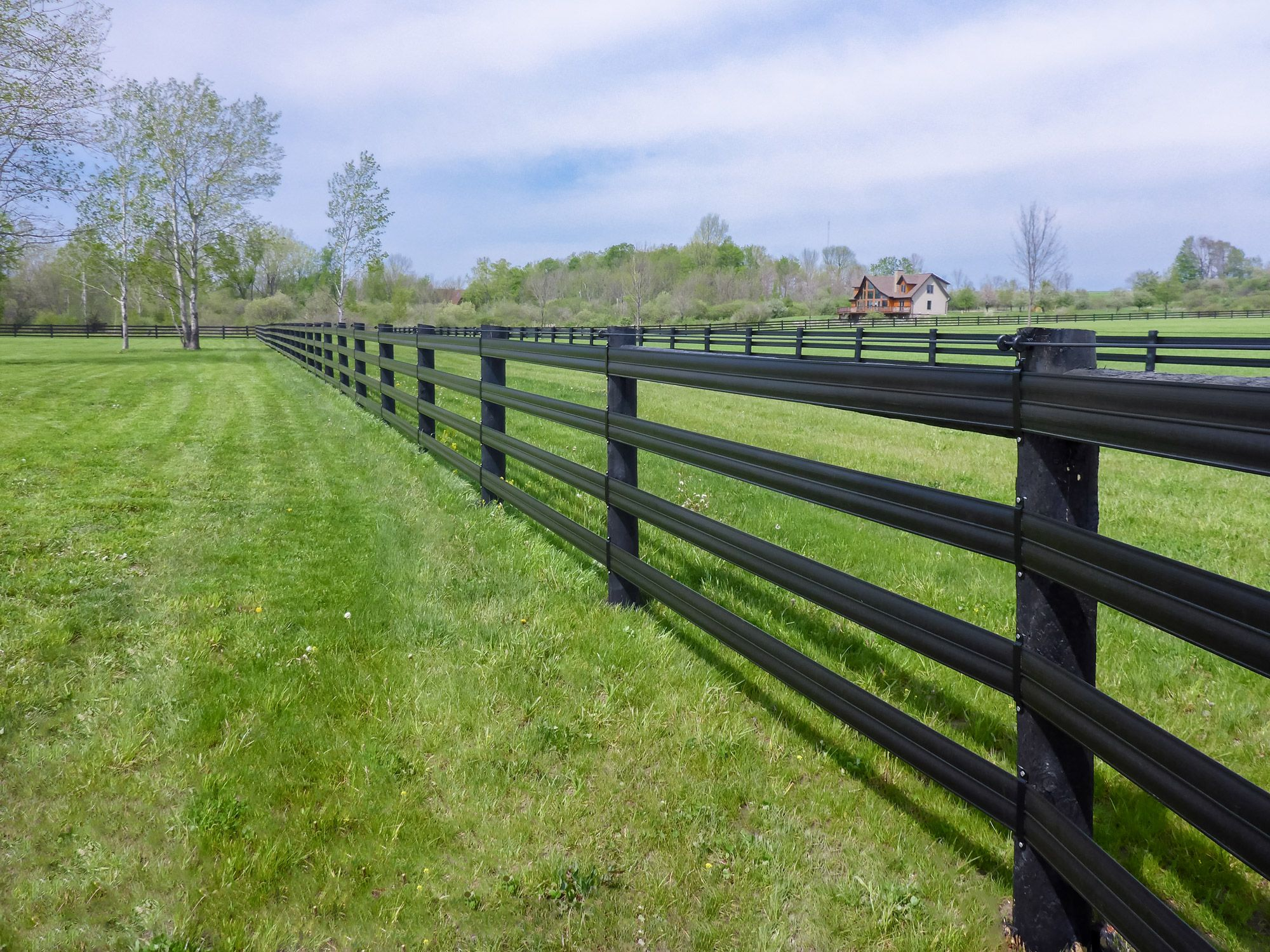 Introducing Your Horses to Electric Fences Safely