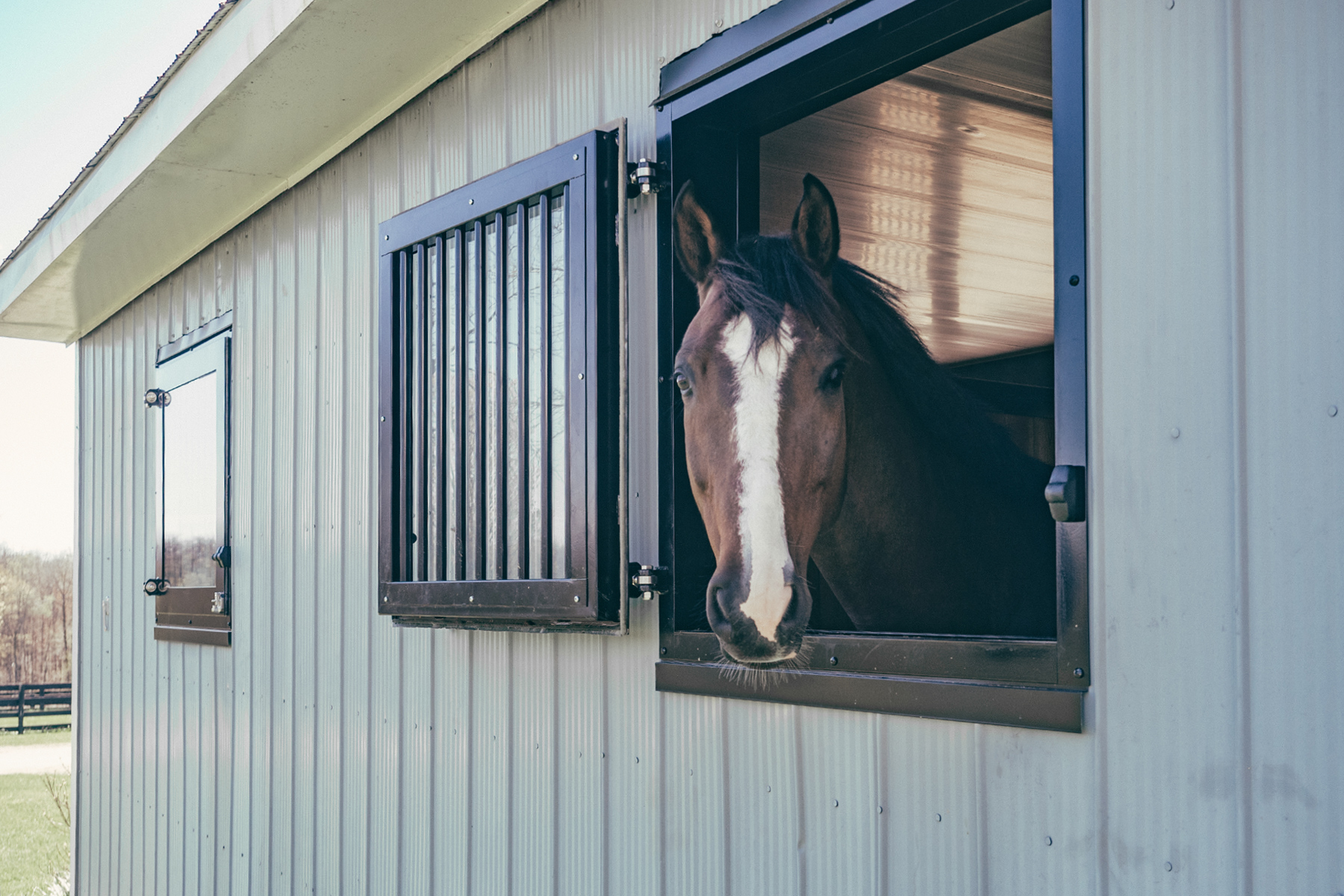 Give Your Horse The Comfort They Need With Dutch Windows