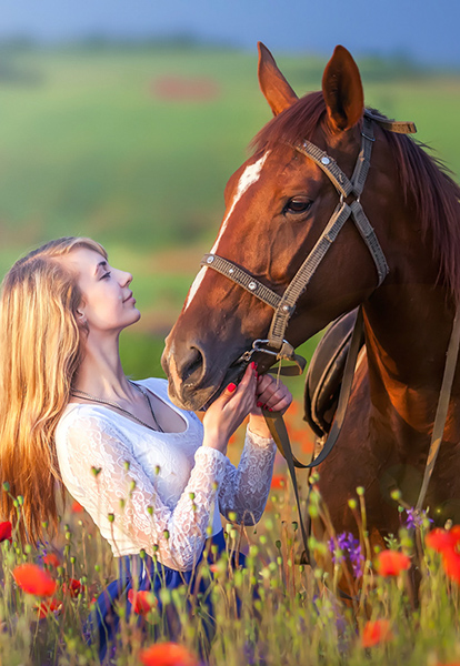 Herbs for Horses - HYALcare Plus